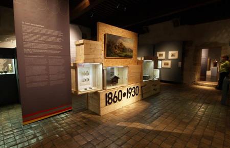 Les domaines de collections présents au Musée-Château d'Annecy