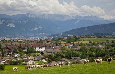 En 2004, La Communauté de l'agglomération d'Annecy est la première à obtenir le label ville d'art et histoire